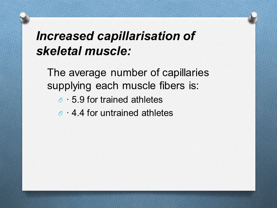 Increased capillarisation of skeletal muscle: The average number of capillaries supplying each muscle fibers is: O · 5.9 for trained athletes O · 4.4 for untrained athletes
