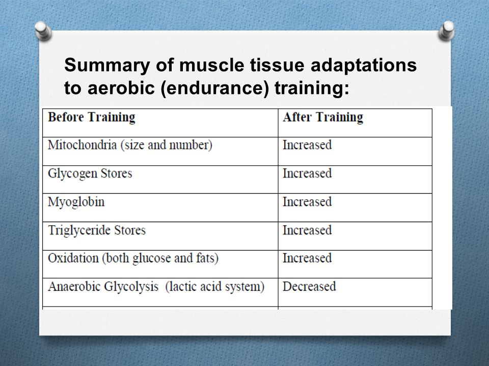 Summary of muscle tissue adaptations to aerobic (endurance) training: