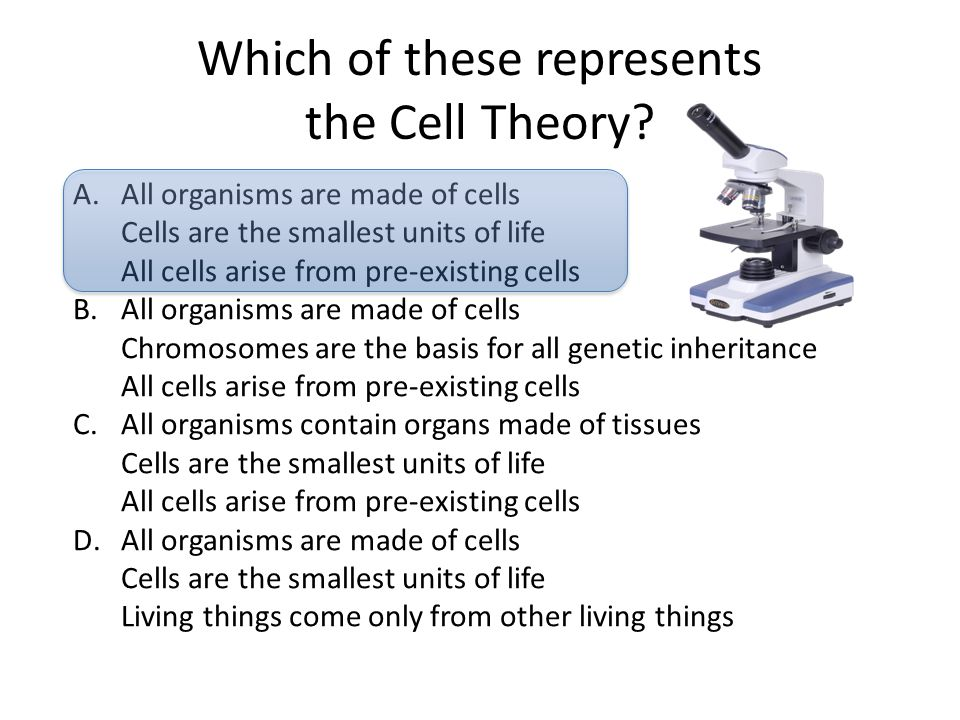 Which of these represents the Cell Theory? A.All organisms are made of cells Cells are the smallest units of life All cells arise from pre-existing ce