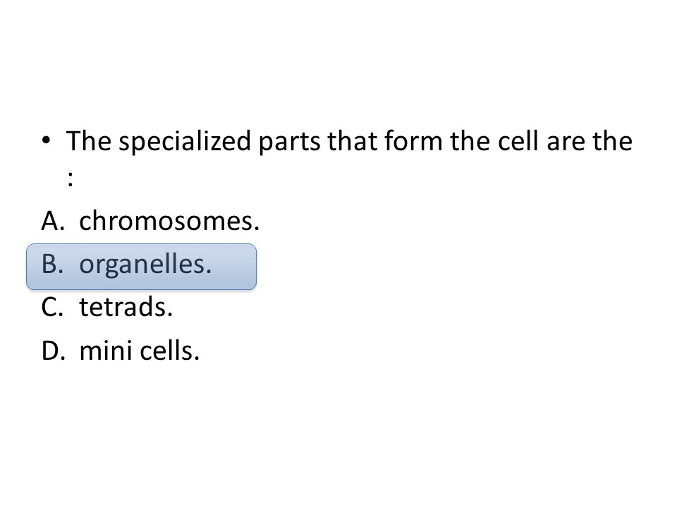 The specialized parts that form the cell are the : A.chromosomes. B.organelles. C.tetrads. D.mini cells.