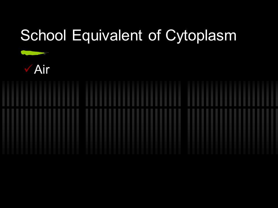 School Equivalent of Cytoplasm Air