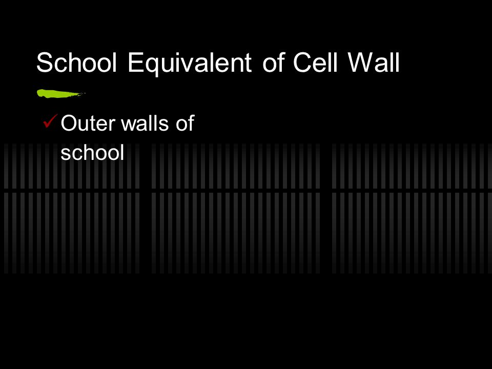 School Equivalent of Cell Wall Outer walls of school
