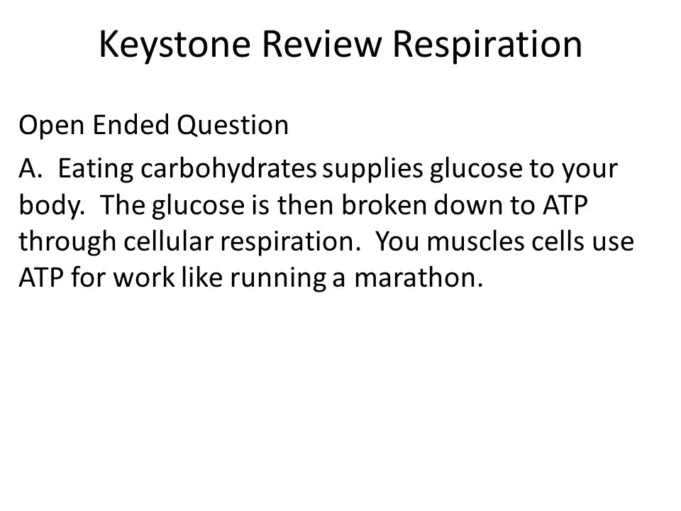 Keystone Review Respiration Open Ended Question A.