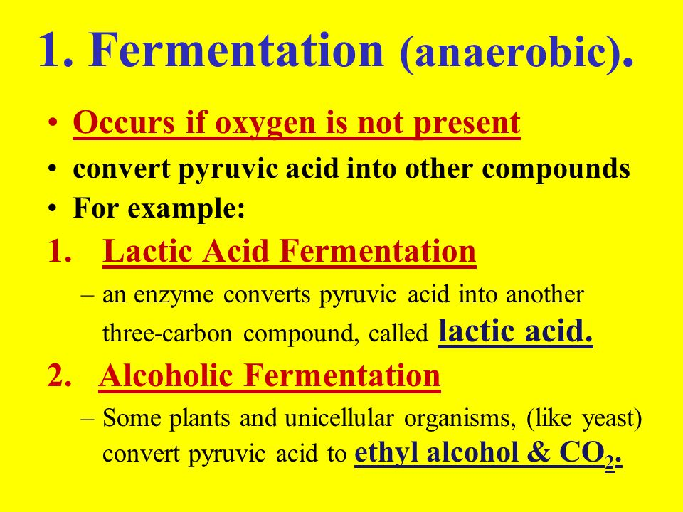 1. Fermentation (anaerobic). Occurs if oxygen is not present convert pyruvic acid into other compounds For example: 1.Lactic Acid Fermentation –an enz