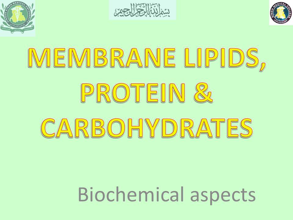 Biochemical aspects