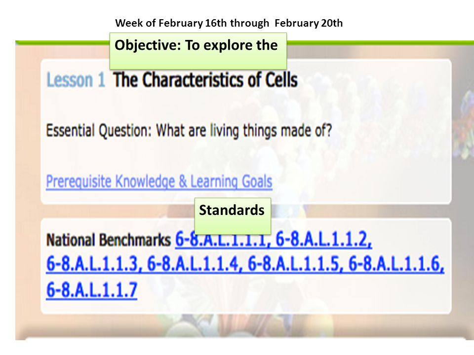 http://www.sciencemusicvideos.com/cell-parts-and-functions/ 1 guided reading 2 cell part and function flash card 3-5 Assessments 3 Matching Labeling an Animal Cells 4 Identify Animal Cell Parts 5 Function of animal Cell Parts