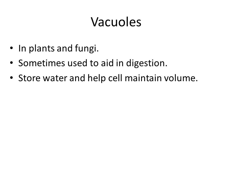Vacuoles In plants and fungi. Sometimes used to aid in digestion. Store water and help cell maintain volume.
