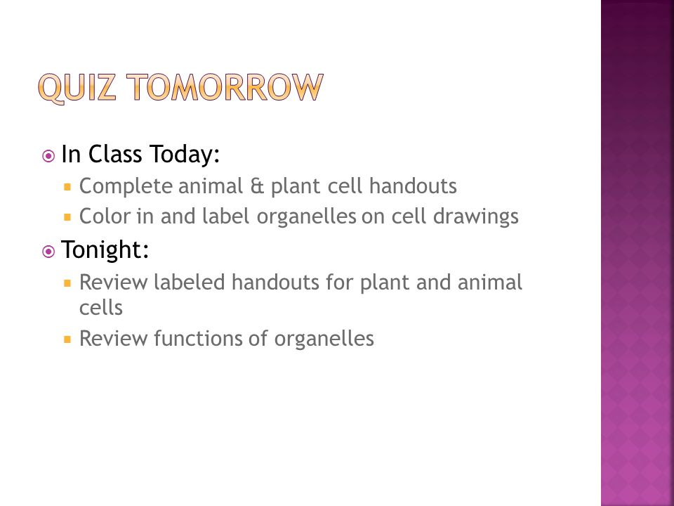  In Class Today:  Complete animal & plant cell handouts  Color in and label organelles on cell drawings  Tonight:  Review labeled handouts for pl