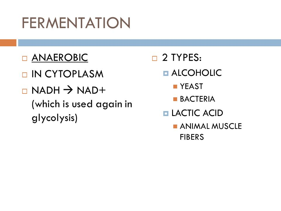 FERMENTATION  ANAEROBIC  IN CYTOPLASM  NADH  NAD+ (which is used again in glycolysis)  2 TYPES:  ALCOHOLIC YEAST BACTERIA  LACTIC ACID ANIMAL M
