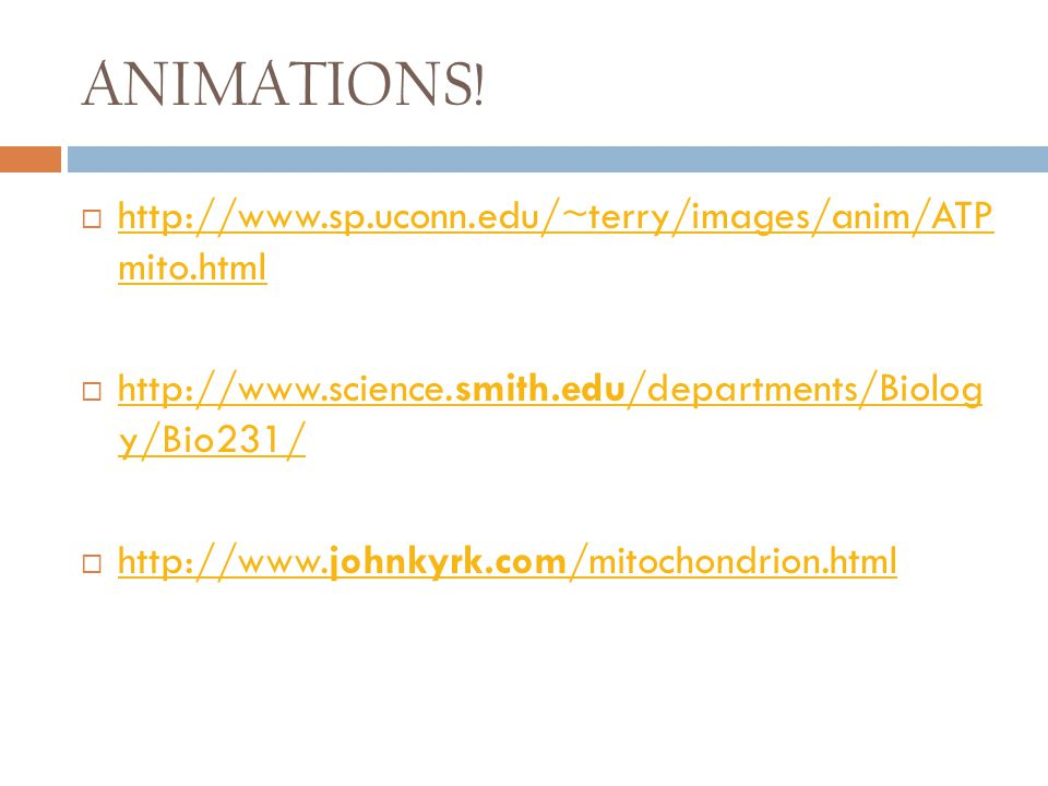 ANIMATIONS!  http://www.sp.uconn.edu/~terry/images/anim/ATP mito.html http://www.sp.uconn.edu/~terry/images/anim/ATP mito.html  http://www.science.s
