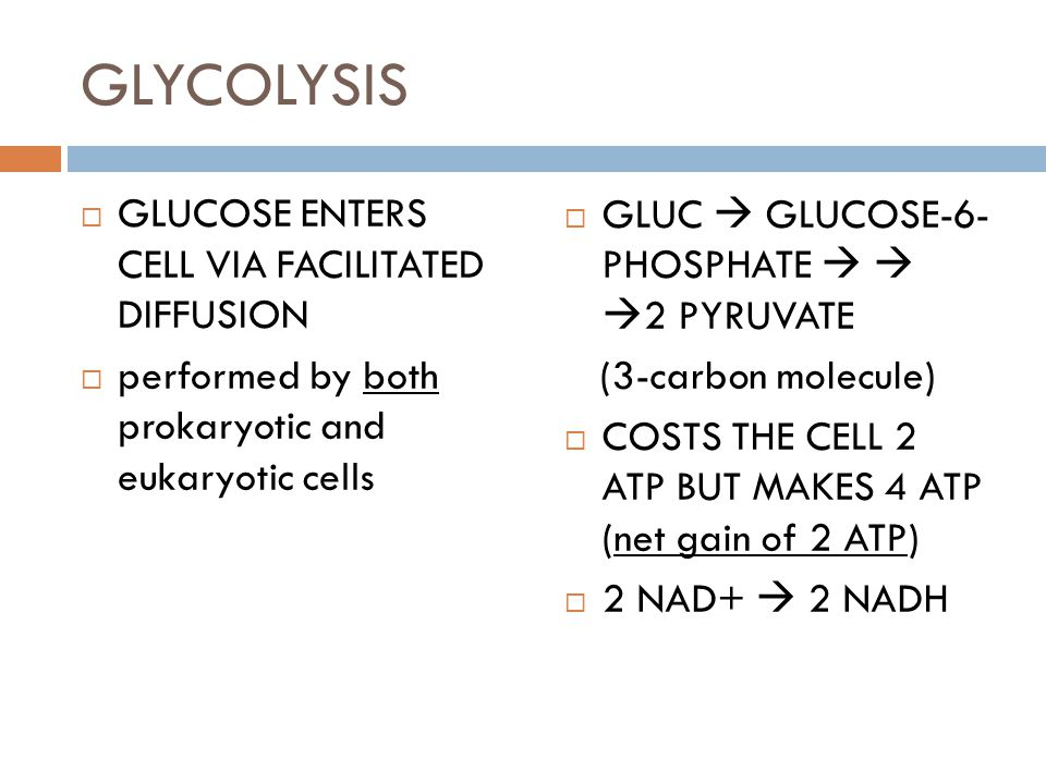 GLYCOLYSIS  GLUCOSE ENTERS CELL VIA FACILITATED DIFFUSION  performed by both prokaryotic and eukaryotic cells  GLUC  GLUCOSE-6- PHOSPHATE    2