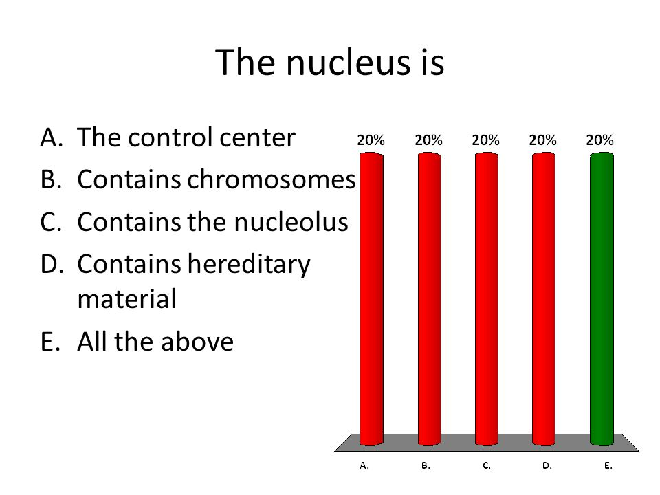 The nucleus is A.The control center B.Contains chromosomes C.Contains the nucleolus D.Contains hereditary material E.All the above