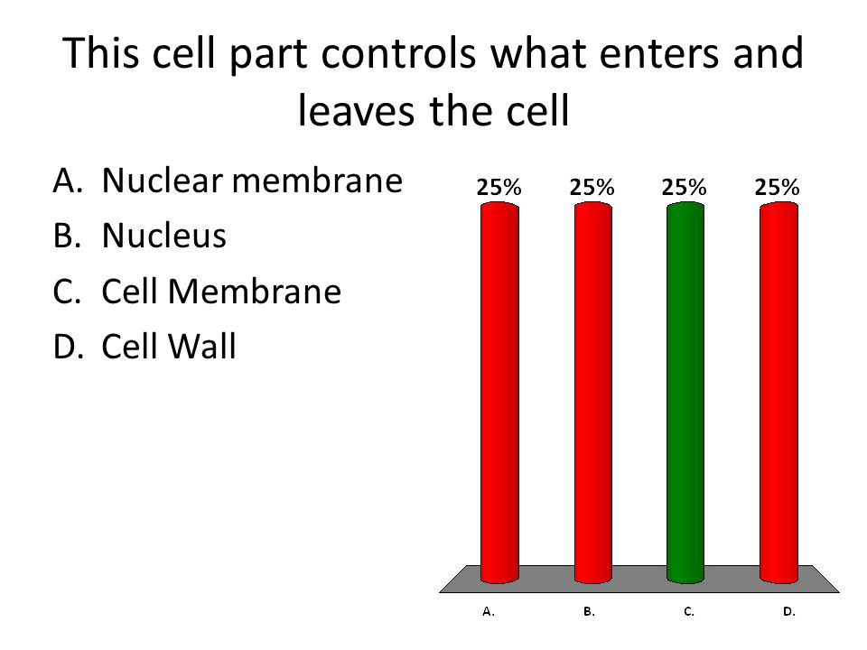 This cell part controls what enters and leaves the cell A.Nuclear membrane B.Nucleus C.Cell Membrane D.Cell Wall
