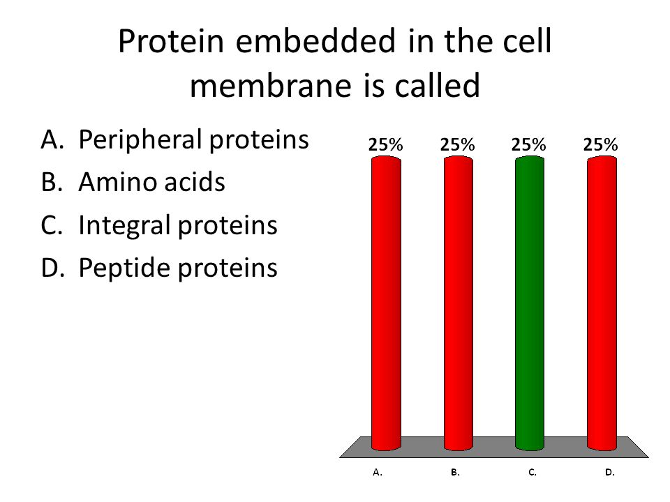 Protein embedded in the cell membrane is called A.Peripheral proteins B.Amino acids C.Integral proteins D.Peptide proteins