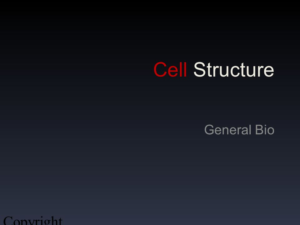 Cell Structure General Bio Copyright 2009, John Ireland