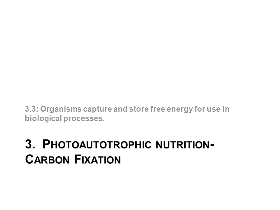 3. P HOTOAUTOTROPHIC NUTRITION - C ARBON F IXATION 3.3: Organisms capture and store free energy for use in biological processes.