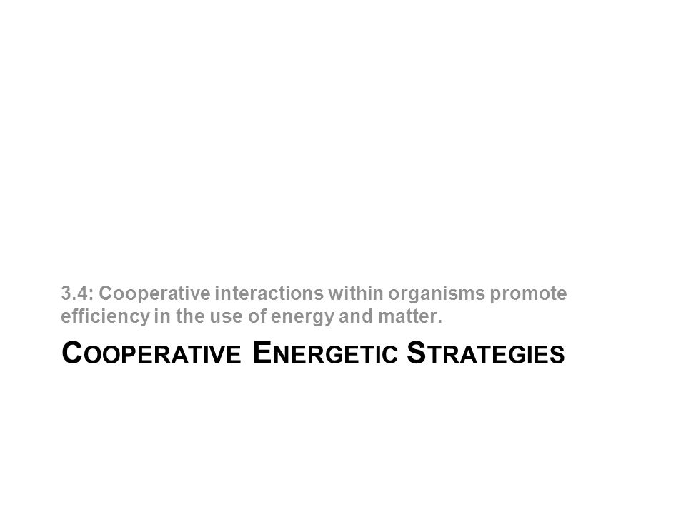 C OOPERATIVE E NERGETIC S TRATEGIES 3.4: Cooperative interactions within organisms promote efficiency in the use of energy and matter.