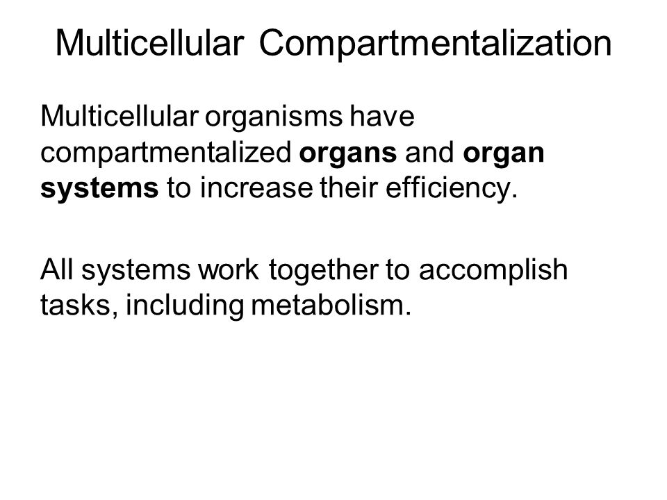Multicellular Compartmentalization Multicellular organisms have compartmentalized organs and organ systems to increase their efficiency.