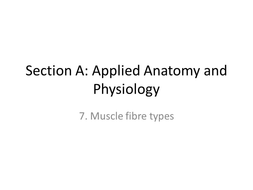 Section A: Applied Anatomy and Physiology 7. Muscle fibre types