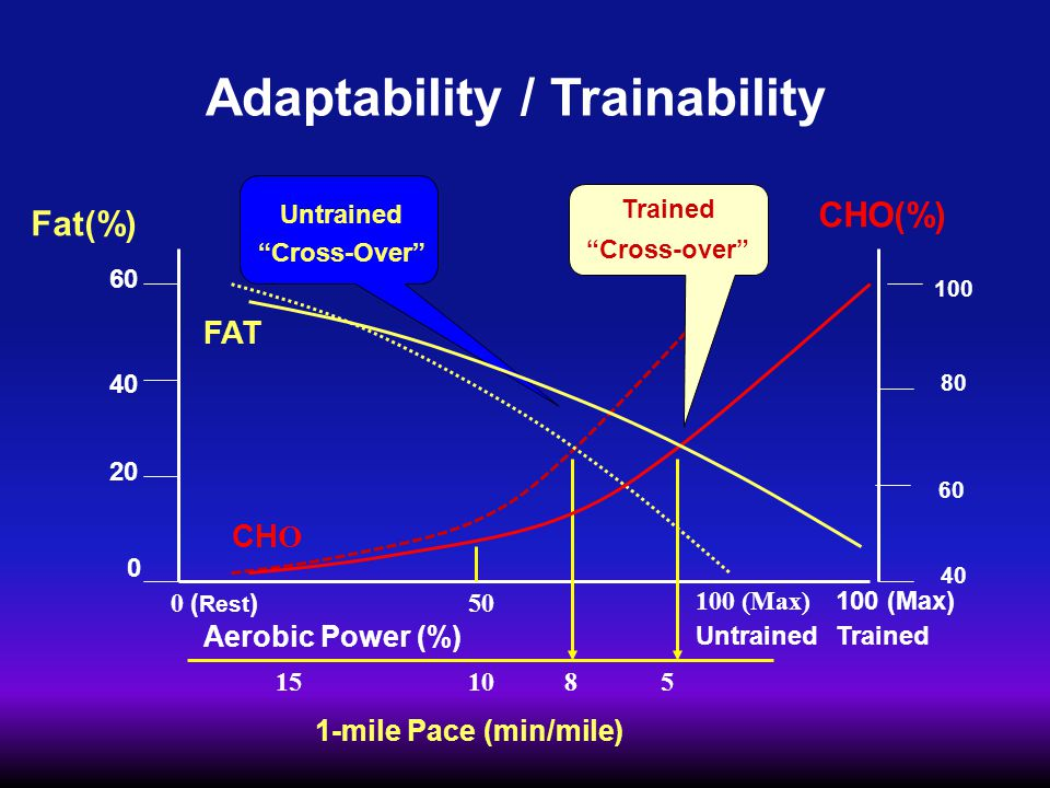 Adaptability / Trainability Fat(%) 60 40 20 0 CHO(%) 100 80 60 40 Aerobic Power (%) 0 ( Rest ) 50 100 (Max) Untrained Cross-Over FAT CH O 1-mile Pace (min/mile) 151085 100 (Max) Trained Cross-over