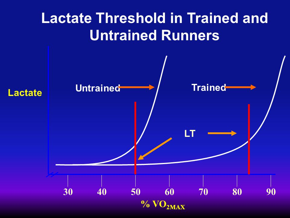 % VO 2MAX 30405060708090 Lactate Untrained Trained Lactate Threshold in Trained and Untrained Runners LT