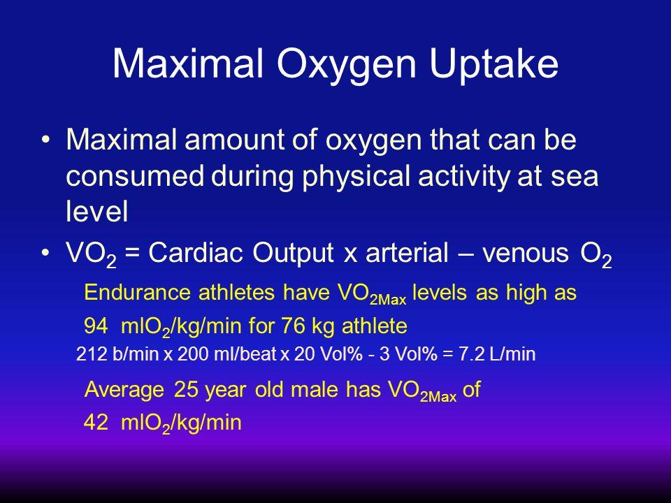 Lactate Clearance (mg/kgmin -1 ) Lactate (mM) 0 2 4 6 8 10 12 14 1.02.03.04.05.0 Pre-Training Post-Training Lactate Clearance During Exercise Brooks et al 2000