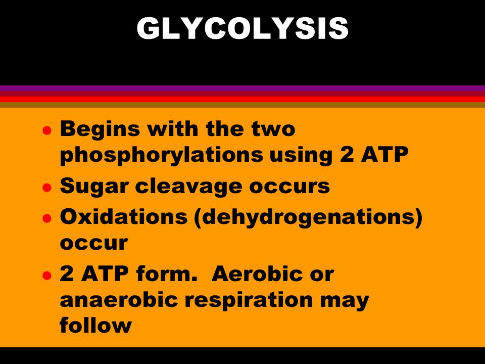 COMPONENTS OF OVERALL PROCESS l Glycolysis l Transition Reaction l Kreb's Cycle l Electron Transport