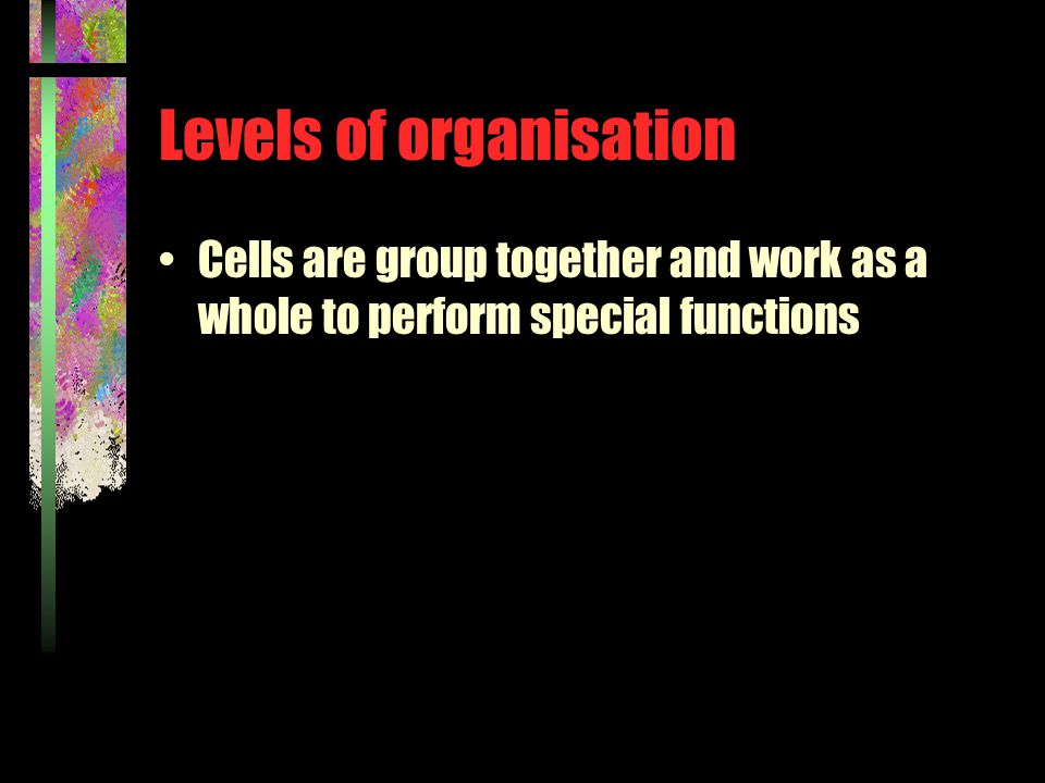 Levels of organisation Cells are group together and work as a whole to perform special functions