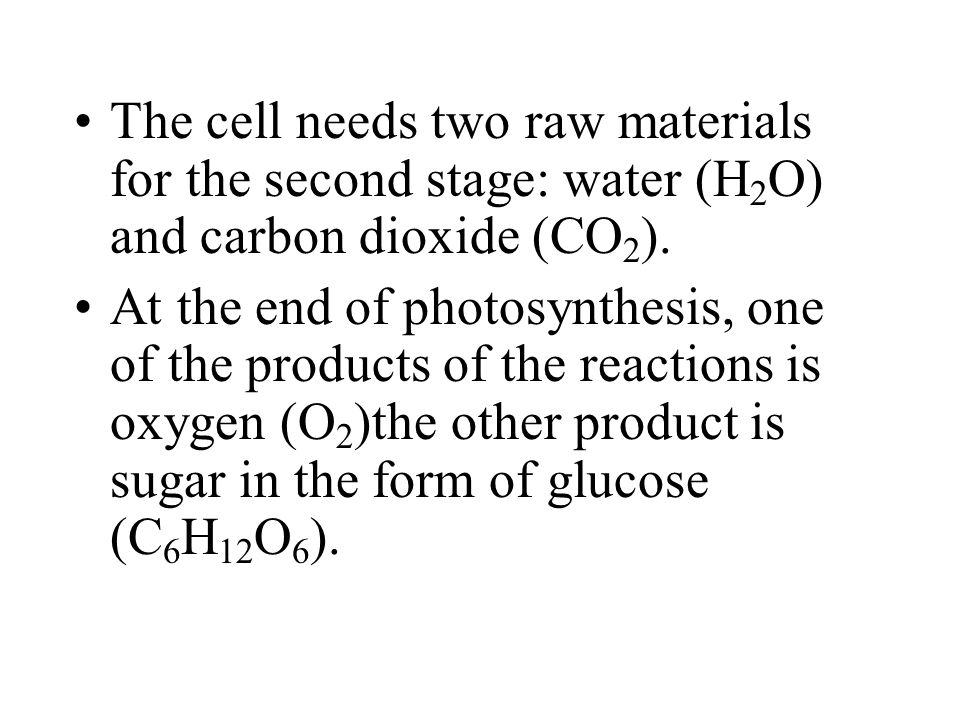 The cell needs two raw materials for the second stage: water (H 2 O) and carbon dioxide (CO 2 ).