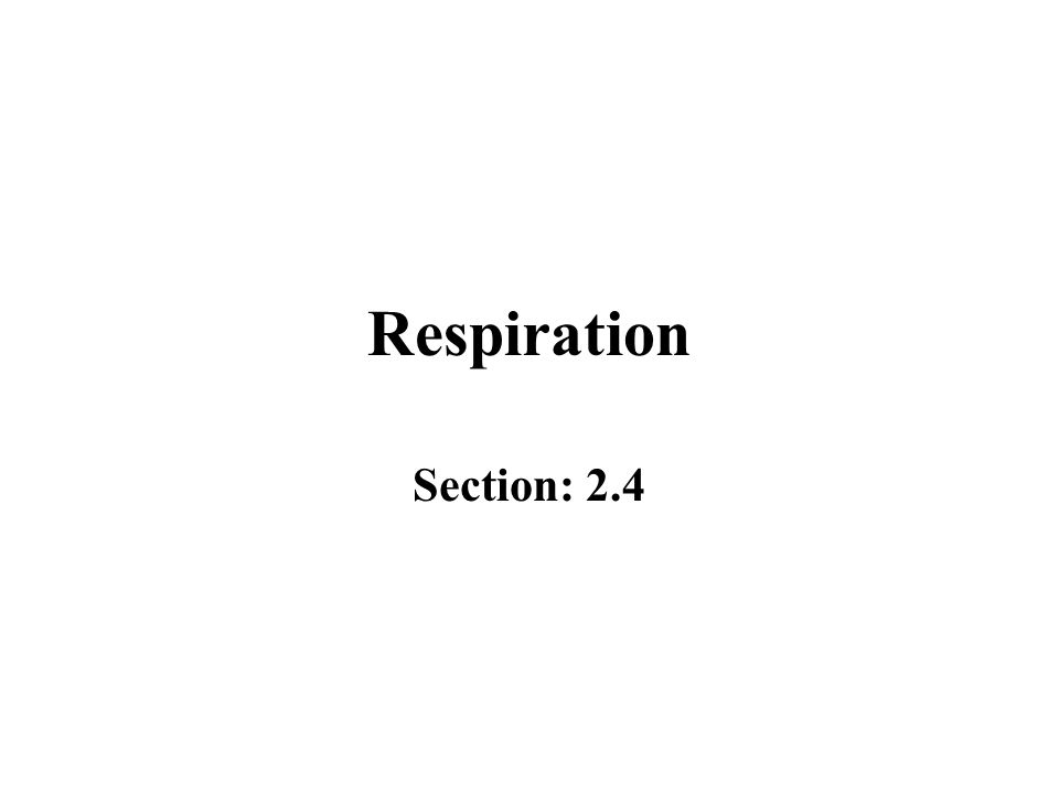 Respiration Section: 2.4