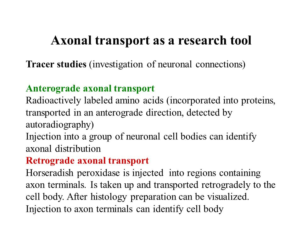 Transduction of signals at the cellular level Axonal part –action potential, spreading without decrement, all-or-nothing law Somatodendritic part – passive conduction of the signal, with decrement