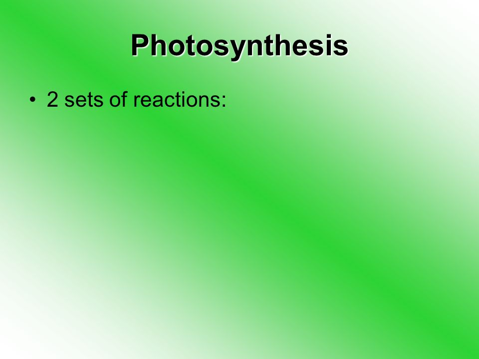 Photosynthesis 2 sets of reactions: