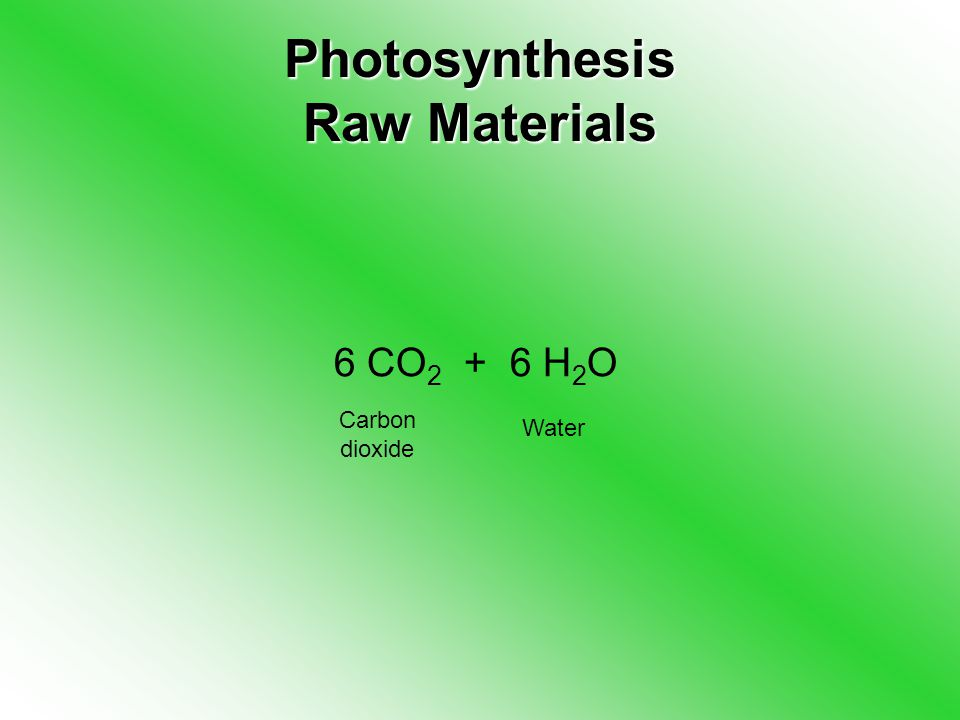 Photosynthesis Raw Materials 6 CO H 2 O Carbon dioxide Water