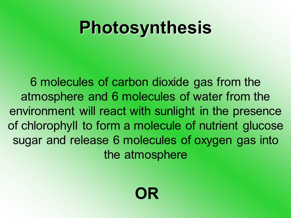 Photosynthesis 6 molecules of carbon dioxide gas from the atmosphere and 6 molecules of water from the environment will react with sunlight in the presence of chlorophyll to form a molecule of nutrient glucose sugar and release 6 molecules of oxygen gas into the atmosphere OR