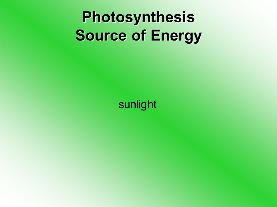 Photosynthesis Source of Energy sunlight