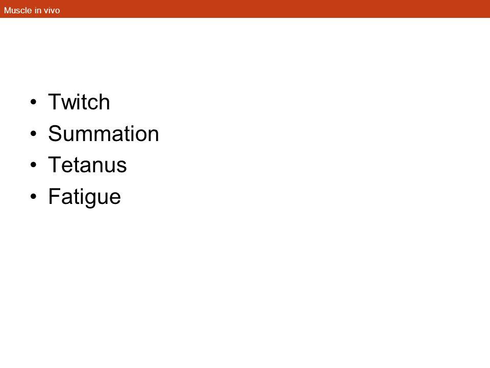 Muscle in vivo Twitch Summation Tetanus Fatigue