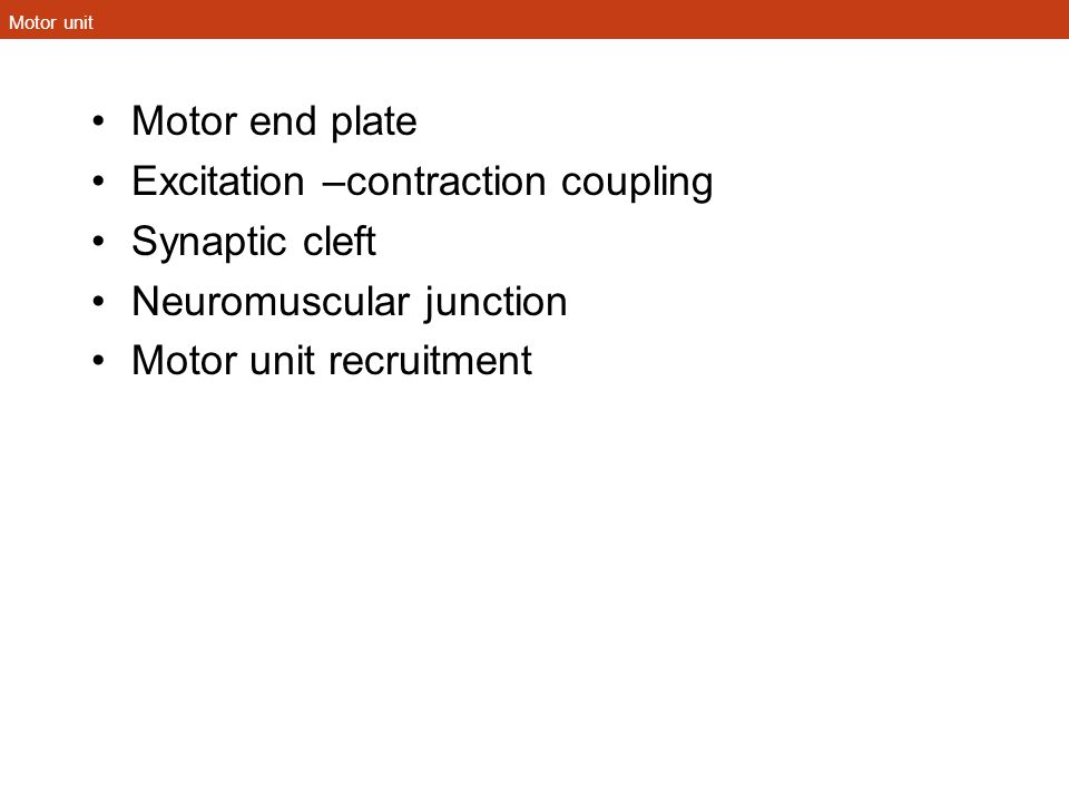 Motor unit Motor end plate Excitation –contraction coupling Synaptic cleft Neuromuscular junction Motor unit recruitment