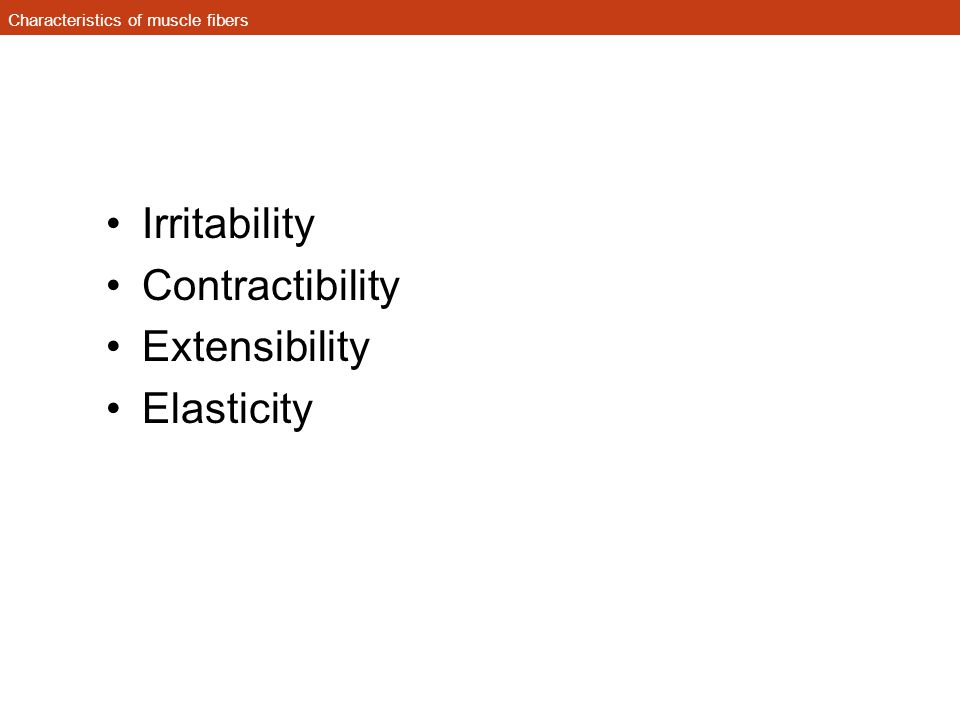 Characteristics of muscle fibers Irritability Contractibility Extensibility Elasticity