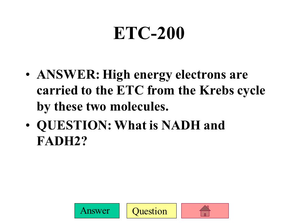 Question Answer ETC-100 ANSWER: The electron transport chain occurs here.