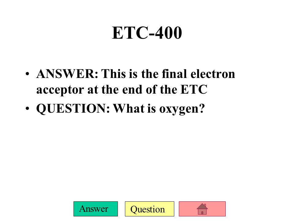 Question Answer ETC-300 ANSWER: Before ATP is produced, the energy from the electrons is converted into this form of energy QUESTION: What is a hydrogen ion gradient?