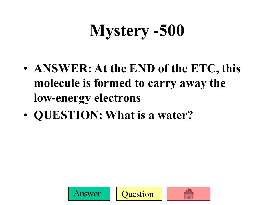 Question Answer Mystery -400 ANSWER: These organisms produce Ethyl alcohol during fermentation QUESTION: What are yeast?