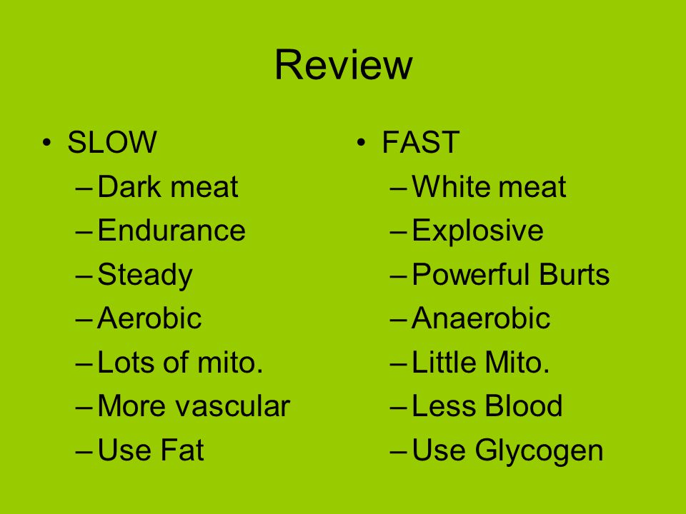 Review SLOW –Dark meat –Endurance –Steady –Aerobic –Lots of mito.