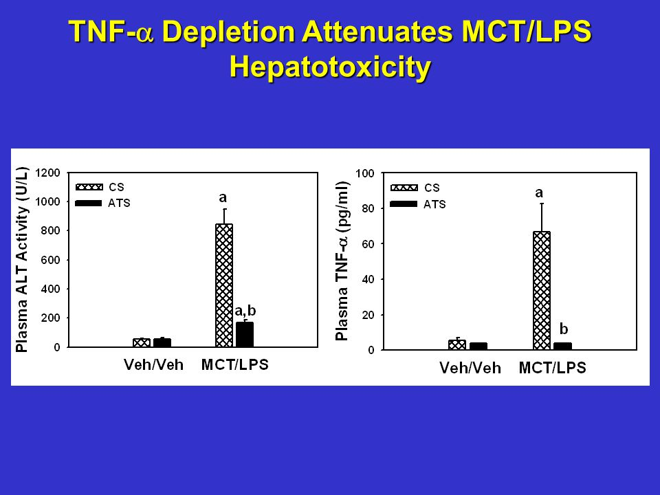 TNF-  Depletion Attenuates MCT/LPS Hepatotoxicity