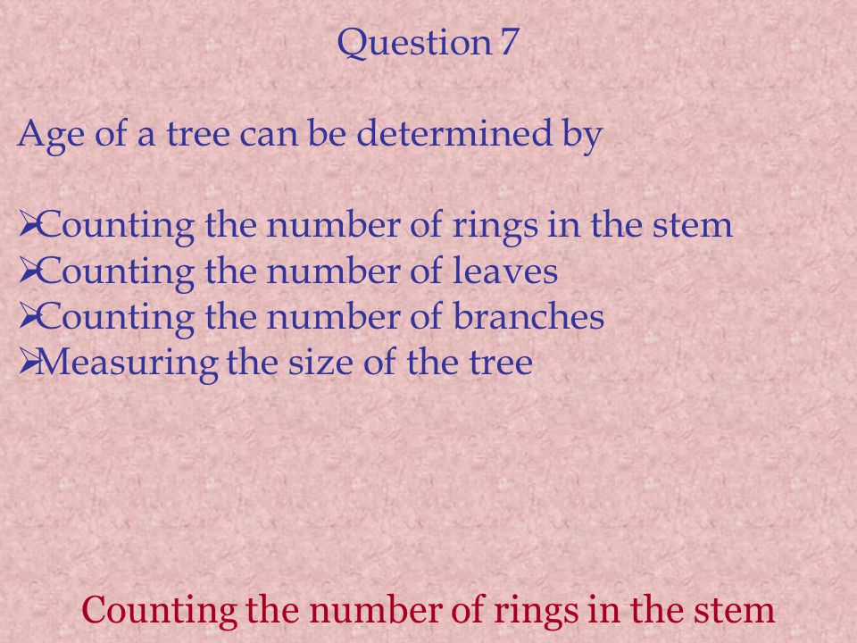 Counting the number of rings in the stem Question 7 Age of a tree can be determined by  Counting the number of rings in the stem  Counting the numbe