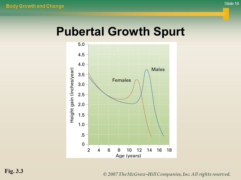 Slide 10 © 2007 The McGraw-Hill Companies, Inc. All rights reserved. Pubertal Growth Spurt Body Growth and Change Fig. 3.3