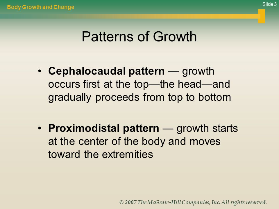 Slide 3 © 2007 The McGraw-Hill Companies, Inc. All rights reserved. Patterns of Growth Cephalocaudal pattern — growth occurs first at the top—the head