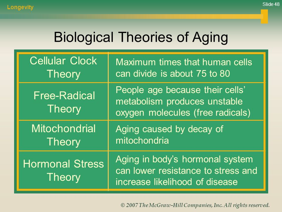 Slide 48 © 2007 The McGraw-Hill Companies, Inc. All rights reserved. Biological Theories of Aging Cellular Clock Theory Free-Radical Theory Mitochondr