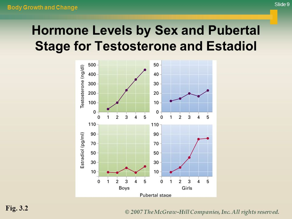 Slide 9 © 2007 The McGraw-Hill Companies, Inc. All rights reserved. Hormone Levels by Sex and Pubertal Stage for Testosterone and Estadiol Body Growth