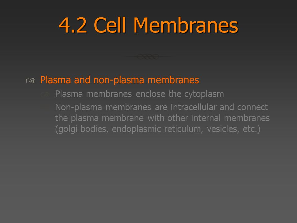 4.2 Cell Membranes  Plasma and non-plasma membranes  Plasma membranes enclose the cytoplasm  Non-plasma membranes are intracellular and connect the plasma membrane with other internal membranes (golgi bodies, endoplasmic reticulum, vesicles, etc.)