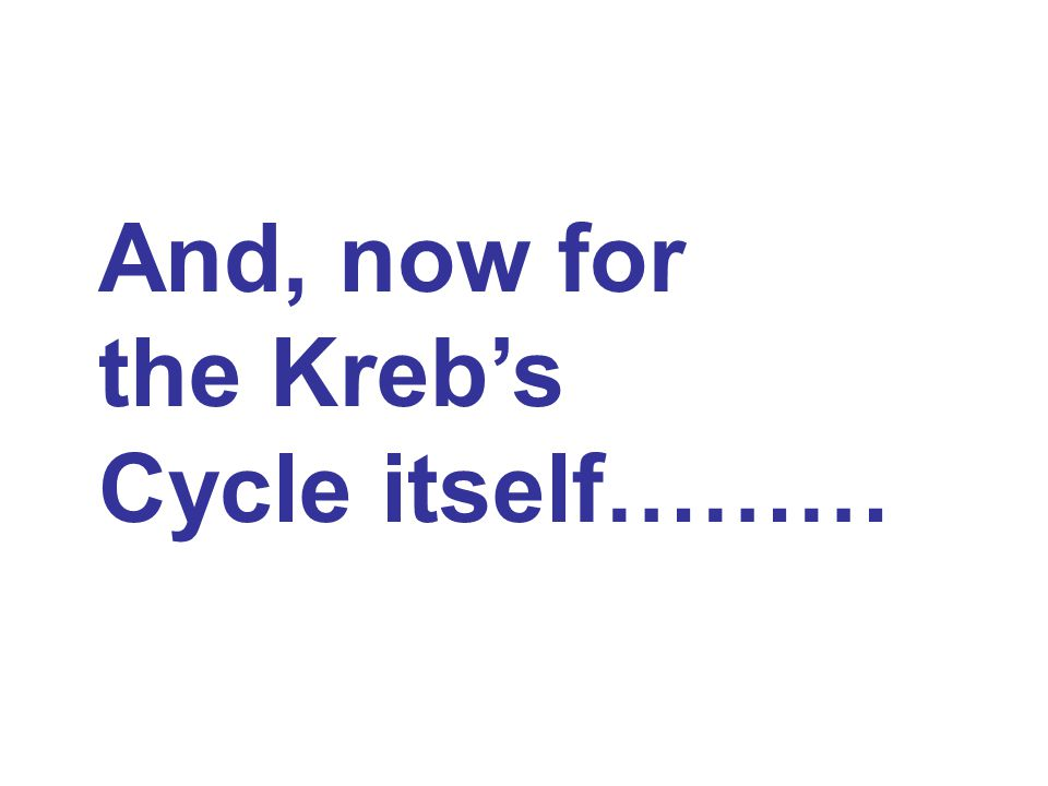 And, now for the Kreb's Cycle itself………